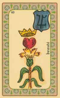 cartes de l oracle de belline : la fleur royale