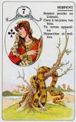 signification melle lenormand carte 7