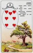 signification melle lenormand carte 5