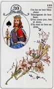 signification melle lenormand carte 30