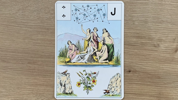 signification melle lenormand carte 15
