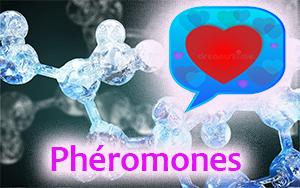 phéromones amour