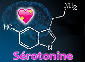 hormones sexuelles